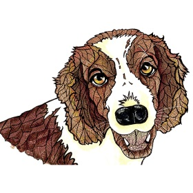 Calming Art - Catherine Gray - Print - Spaniel - A3 Print